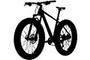 Fat / Snow bike